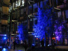 Venkovní nasvícení stromů na firemní akci.