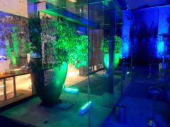 Osvětlení vstupní části do salonku, restaurace či jiné místnosti.
