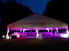 Svatební party stan s nasvícením do magenty.